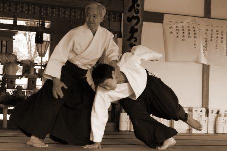 Doshu Iwama 2007 (2)